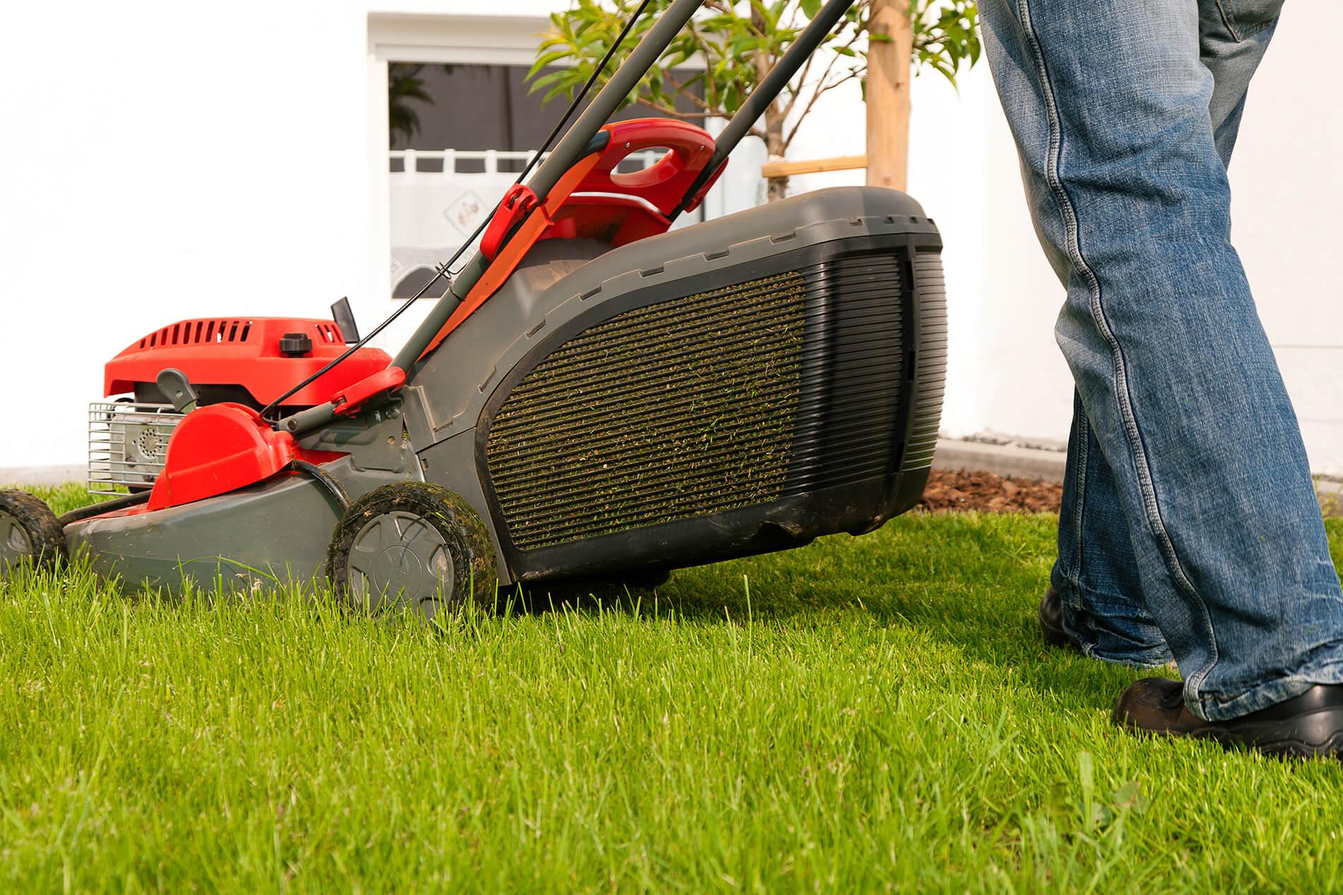 Anlita oss för gräsklippningen!